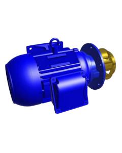 POMPE DE PULVERISATION SANS VOLUTE  1.1kW-3000-230/400 50 Hz CXV 74 / 80 / 84 / 89 / 93 -